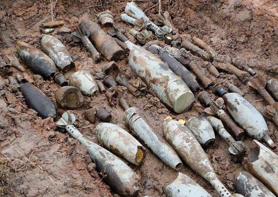 Под Волгоградом обезврежено около 6 тонн боеприпасов времен  Великой Отечественной войны