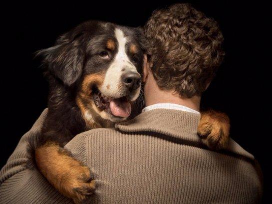 Собаки умеют разбираться в людях
