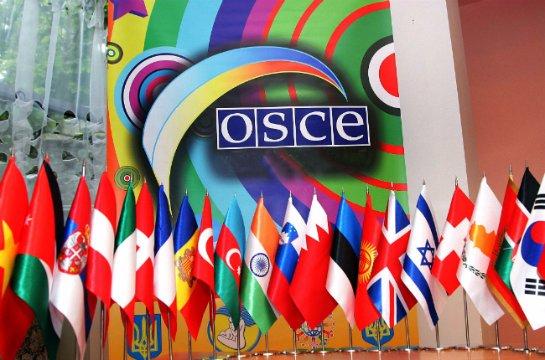 Российская Федерация будет отстаивать свои права в парламентской ассамблее ОБСЕ