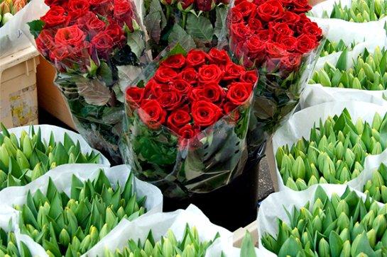 Россия приостанавливает импорт цветов из Евросоюза