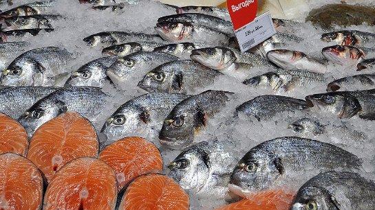 Россия сможет торговать рыбой с Бразилией