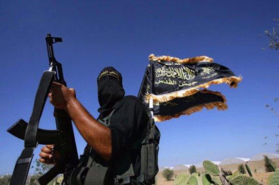 Правительство займется российскими добровольцами, воюющими на стороне ИГИЛ