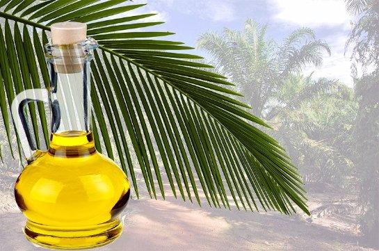 Власти ограничат использование  пальмового масла