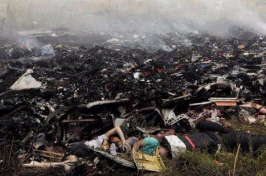 На месте крушения Боинга нашли раннее не обнаруженные останки пассажиров