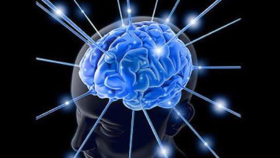 Ученые создали искусственный человеческий мозг