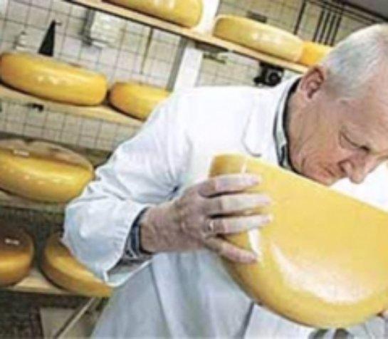 В Министерстве сельского хозяйства заявили, что массовых подделок сыра в России нет