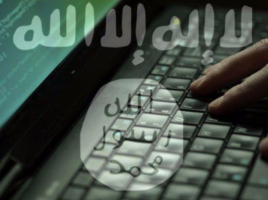 Международная группа хакеров тоже будет бороться с