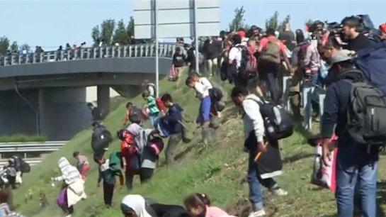 Поляки тоже не хотят видеть у себя беженцев
