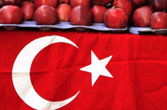 По словам властей, антитурецкие санкции отразятся на Турции больше, чем на России