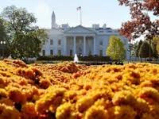 WikiLeaks опубликовал доказательства коррупции в Белом Доме