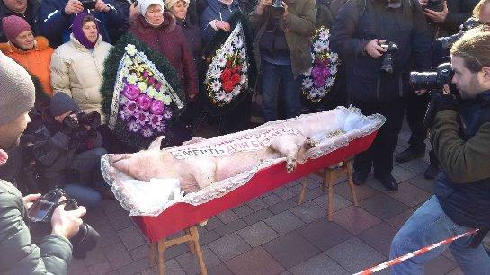 Украинские аграрии принесли к зданию правительства мертвую свинью, помещенную в гроб