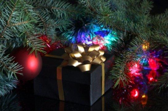 Жена американского полицейского украла рождественские подарки соседей