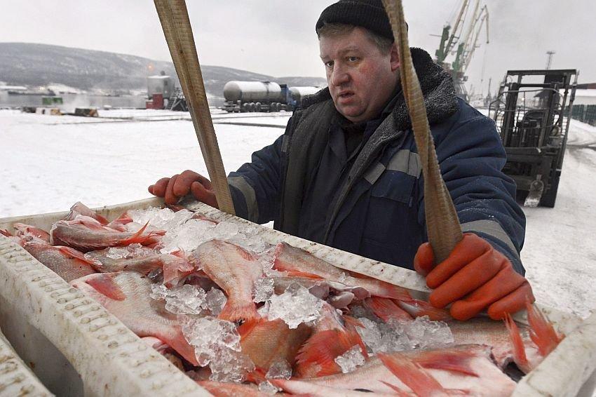 Рыболовство на Дальнем Востоке поставят под государственную поддержку